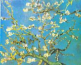 Vincent van Gogh Blossoming Almond-branches Print