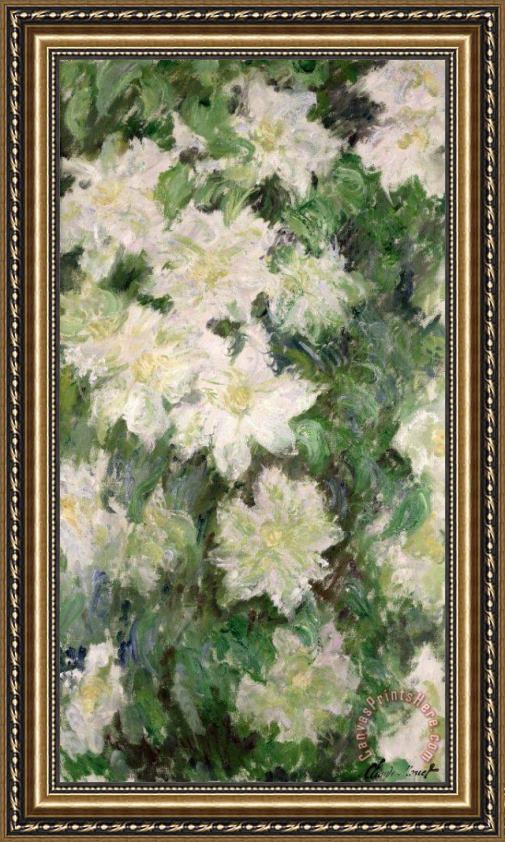 Claude Monet White Clematis Framed Painting