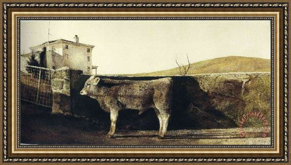 Collection Young Bull Framed Painting