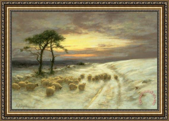 Joseph Farquharson Sheep in the Snow Framed Print