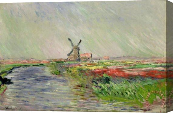 Claude Monet Tulip Field in Holland Stretched Canvas Painting / Canvas Art