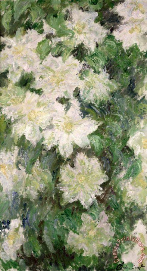 Claude Monet White Clematis Art Painting