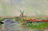 Claude Monet Tulip Field in Holland Print