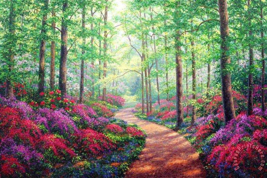 Collection Woodland Walk Art Print