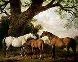 George Stubbs Two Mares and a Foal Print
