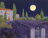 Collection 7 Lavanda Di Notte Print