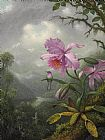 Martin Johnson Heade Hummingbird Perched on The Orchid Plant Print