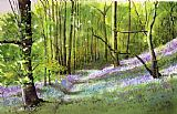 Paul Dene Marlor Path through bluebell wood Print