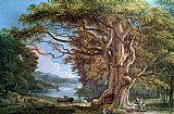 Paul Sandby An Ancient Beech Tree Print
